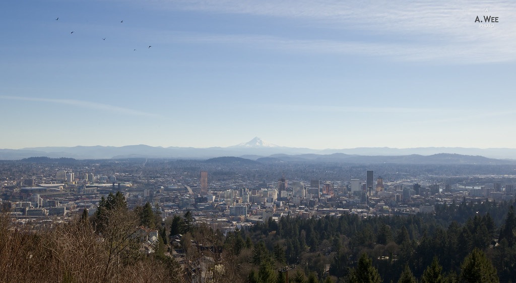 Downtown and Mt Hood