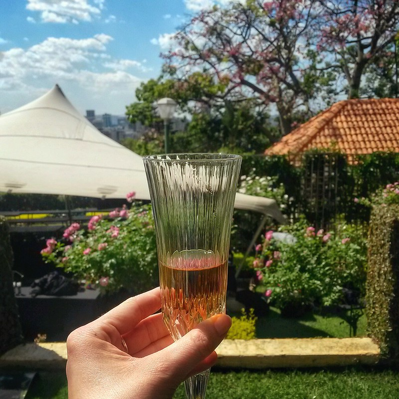 Pink champagne in the Pretoria mayor's garden