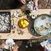 Twenty Dinners Cookbook by Nicole Franzen Photography
