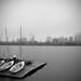 Foggy Skyline - Canon AE-1 Film