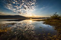 Morning at Ceknica lake