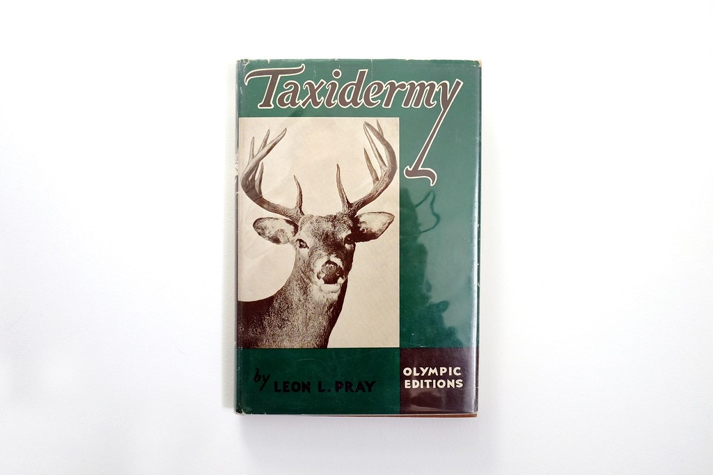 taxidermy-cover