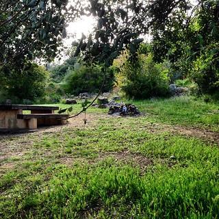 L'àrea de lleure de La Carrova podria estar més neta #amposta
