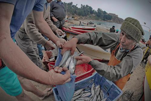 Vendiendo la pesca, (sin acento) Horcón Merluza