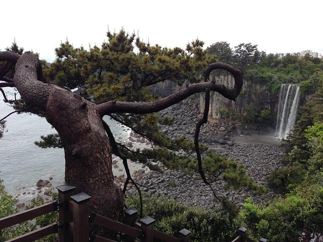 Jeongbang Waterfall in the distance