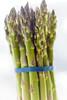 Asparagus Beauty Vertical