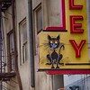 Alley Cat. Cool bar in an alley in Bakersfield, California. #sign #neon #vintage #cat #alley #alleycat #bakersfield #california #obsessivehobbyist