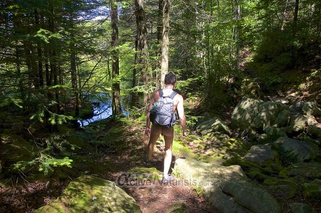 naturist 0016 Appalachian trail, Vermont, USA