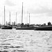 Small photo of Afloat
