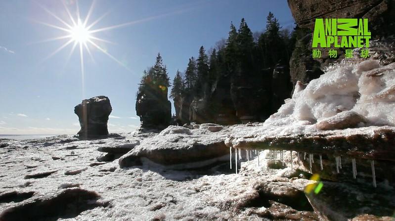 冰雪風雨仍持續侵蝕岩石,強勁的潮汐日夜沖刷著底下的岩層,讓芬迪灣的各處展現多樣風貌。(動物星球頻道提供)