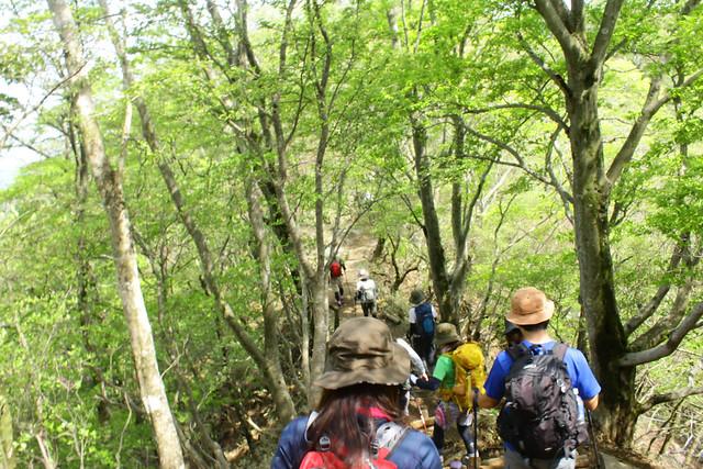 2014-05-24_00308_鍋割山.jpg