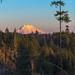<p>Sunset shot of Mt. Rainer taken from Shelton, WA</p>