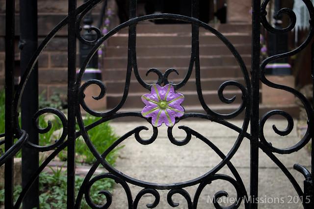 purple flower gate