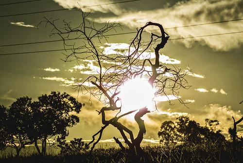 sunset brazil nature brasil evening countryside grande nikon natureza pôrdosol ms campo hdr j1