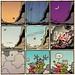 Laugh-Out-Loud Cats #2701 by Ape Lad