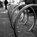 Slinky by Tom Hilton