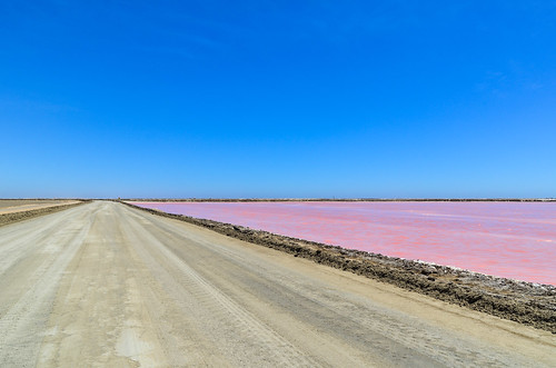 Routes à travers les eaux roses des marais salants de Walvis Bay, Namibie