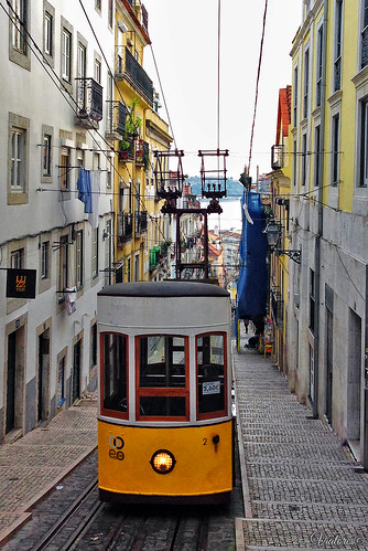 Elevador da Bica. Lisbon. Portugal