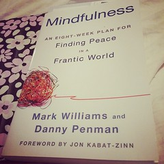 Picked this up at the B&N today. Im somewhat dubious, but it has good reviews and I need to try something. #mindfullness