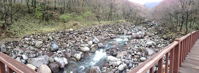Stream panoramic