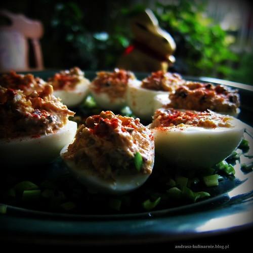 jajka faszerowane portugalską makrelą
