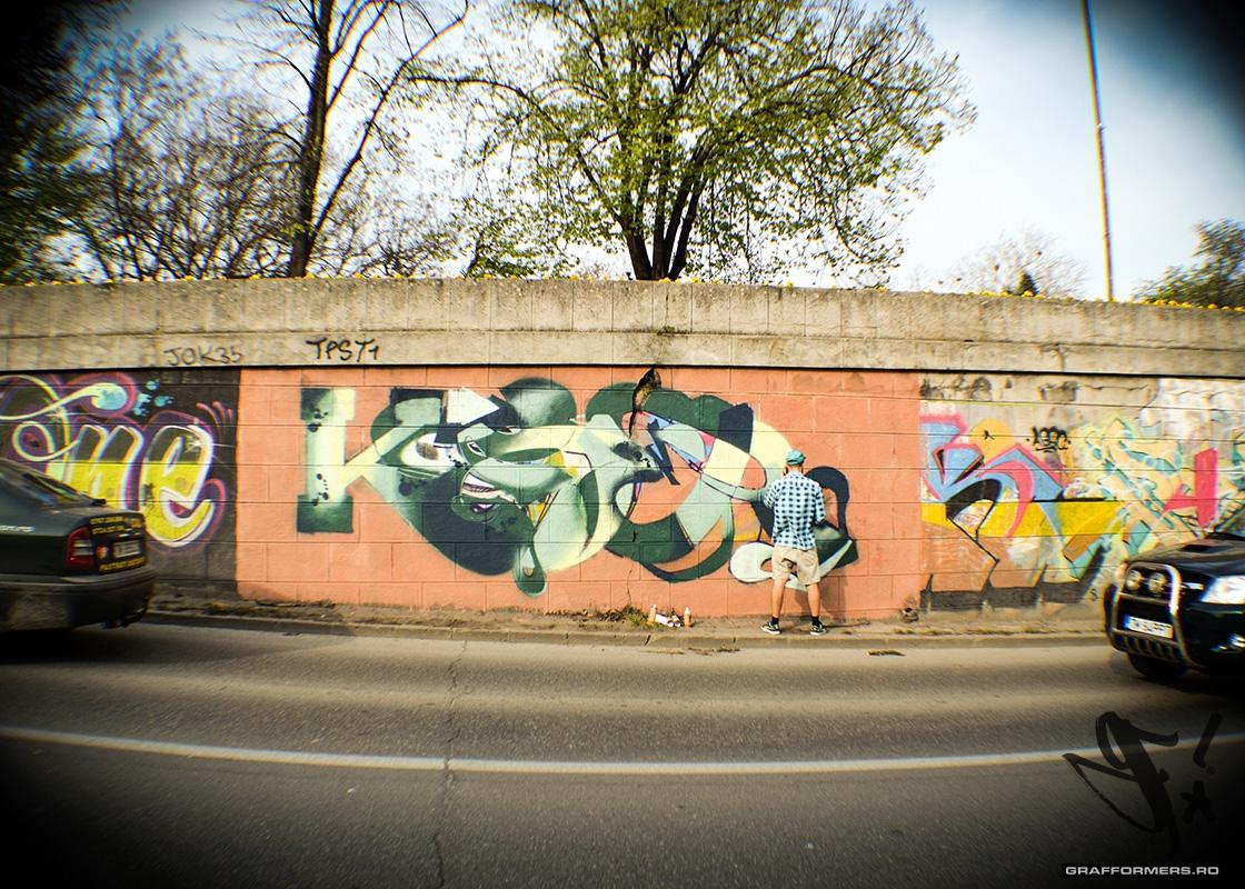 03-grafformers_ro-20140401-nicolae_titulescu_embankment_session_3-timisoara