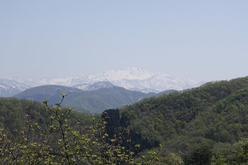 揚原山登山口付近からの白山