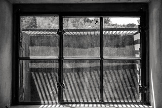 Fagus Werk UNESCO-Welterbe: Fenster