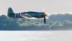 Royal Navy Hawker Sea Fury FB.11 WJ288
