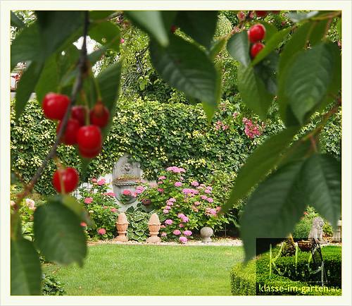 Steinboeck-Garten, Goetzendorf a.d. Leitha | 2015-06