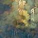 the same pond, multiple exposure by Caroline Fraser