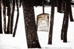 Cemetery-6