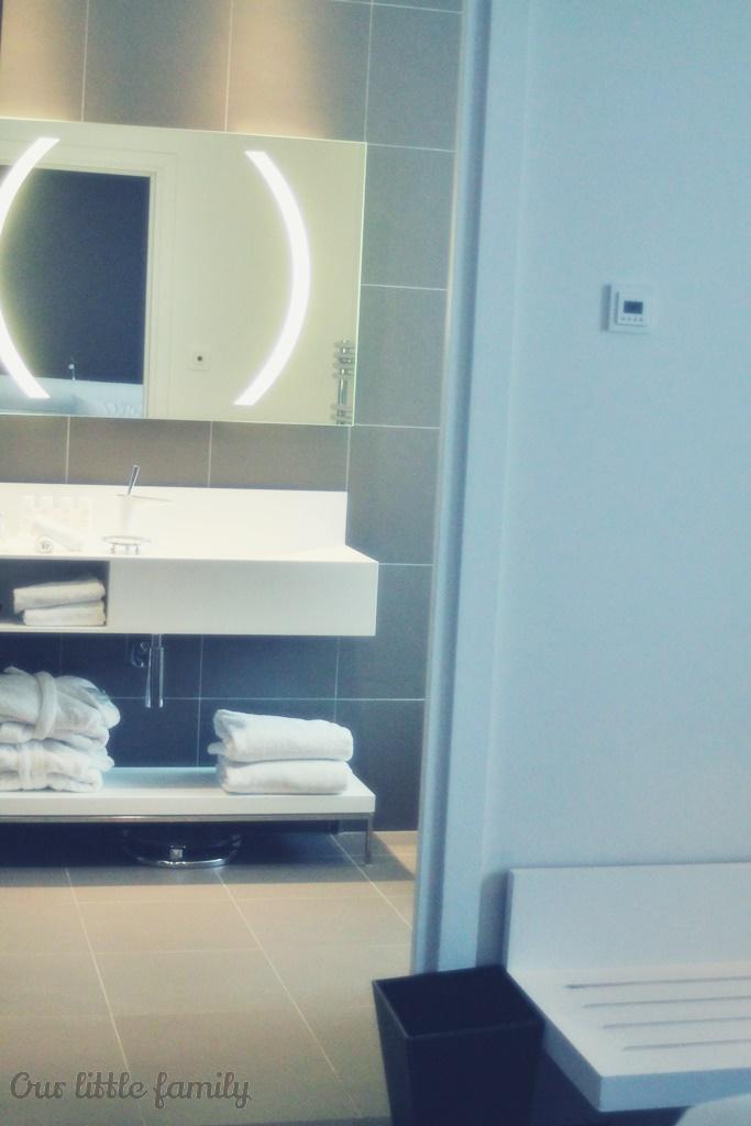 chambre au radisson blu de Nantes 17