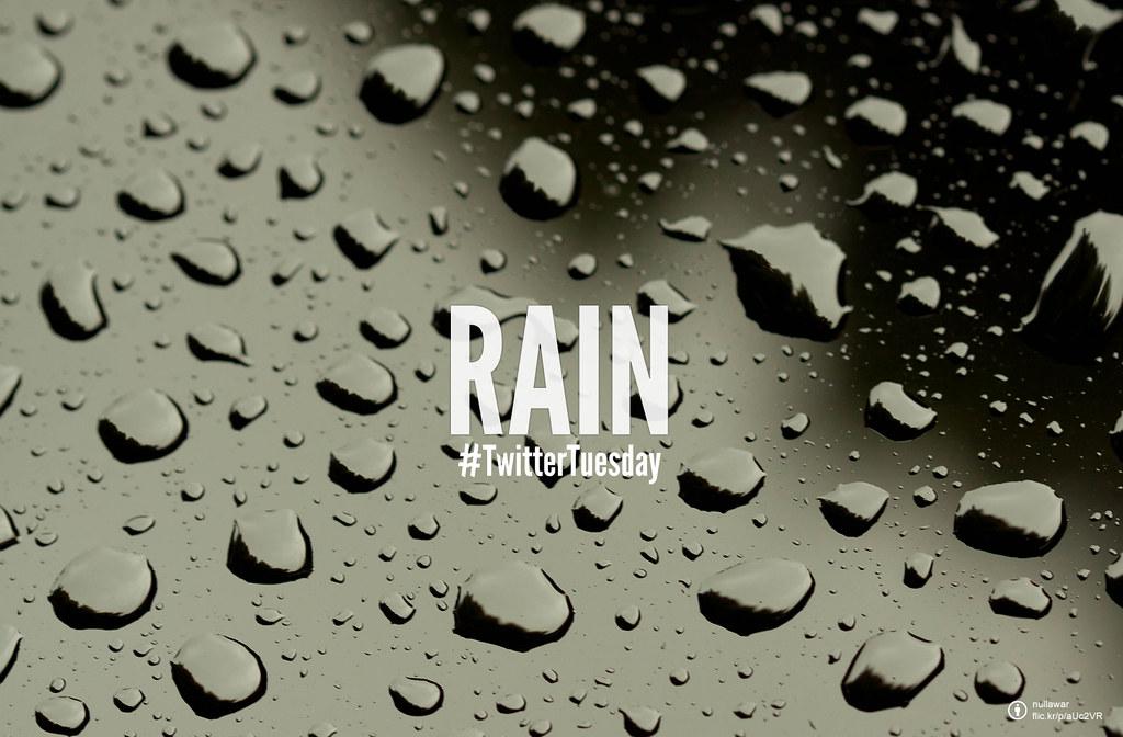 #TwitterTuesday: Rain