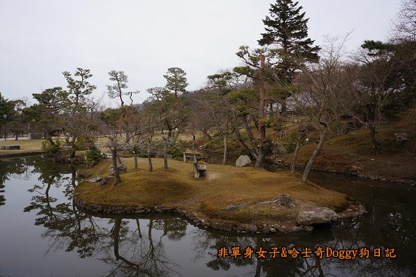 日本奈良公園東大寺21