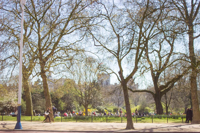 visiting St James's Park London