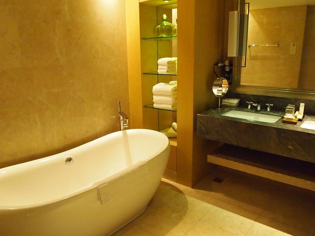 P4179031 Marina Bay Sands Hotel(マリーナ・ベイ・サンズ・ホテル)