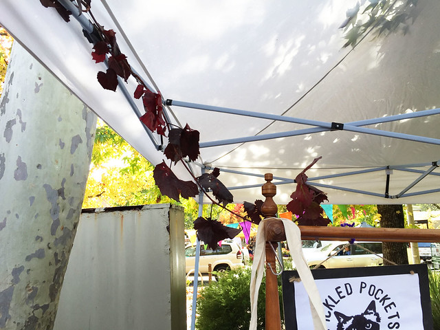 26.Apr.15 'Autumn Harvest' Stirling Laneways Market