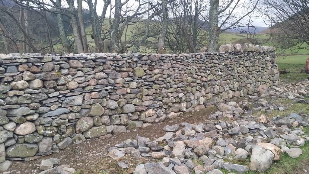 Nice neat bit of dry stone walling #sh
