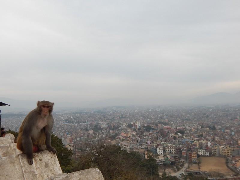 150208 Kathmandu (56) (2304 x 1728)