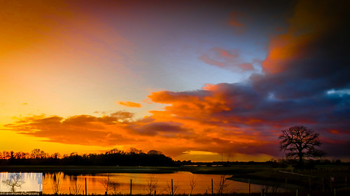 trees sunset sky pits silhouette bedford sundown scenic bedfordshire felton broom workings gravelpits robertfelton gypsylanewest