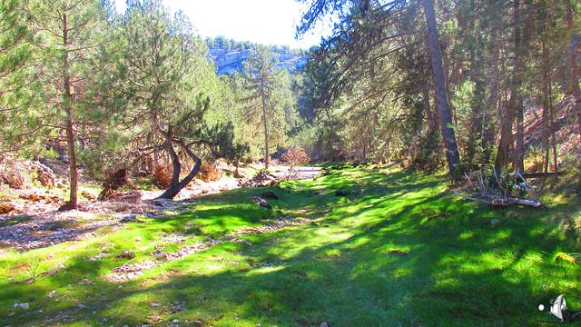 2015_04_04_Cañón del Río Lobos_050