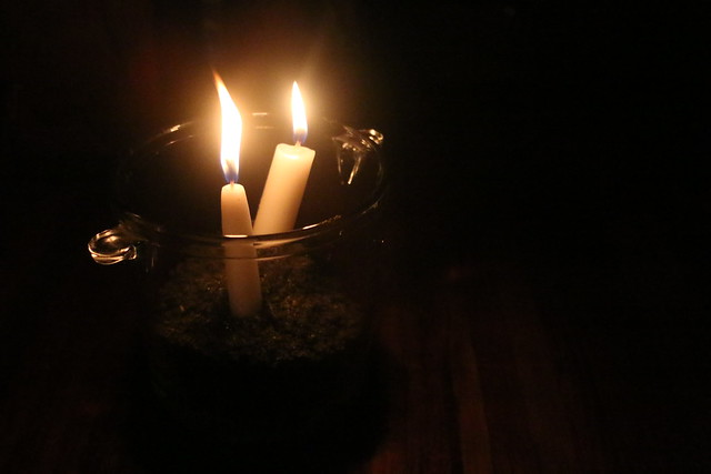 Blue Osa Earth Hour