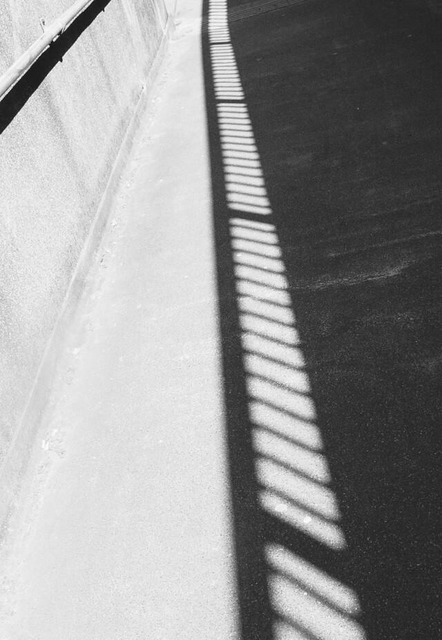 shadow of railings