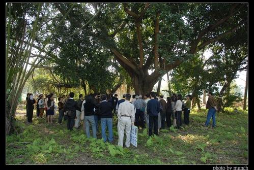 護樹團體邀請議員查探、搶救樹木。攝影:Munch