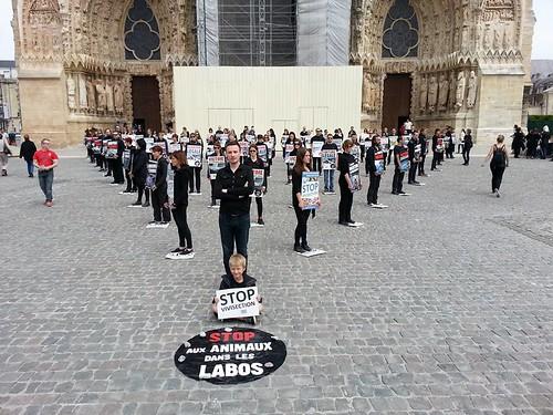 internationalcampaigns a posté une photo:Happening STOP aux animaux dans les labos ! organisé par International Campaigns Nord devant la cathédrale de Reims en soutien notamment à l'ICE Stop Vivisection.