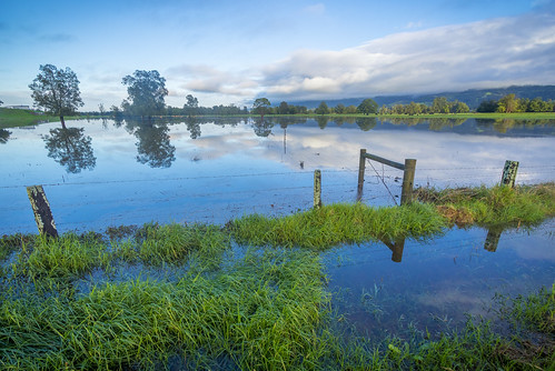 Flooded Berry Pastures