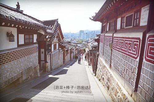 qingxin6