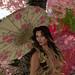 Cherry Blossom 4 by lola.key