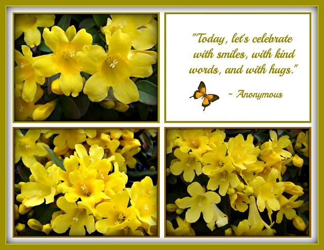 """""""Today, let's celebrate with smiles, with kind words, and with hugs."""""""